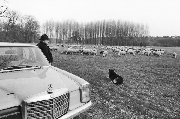Régis Bossu ''Shepherd with Benz and dog'', 1973