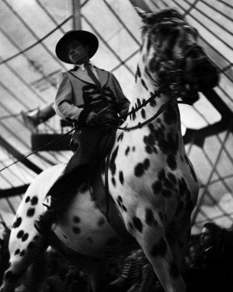 """René Groebli """"Zirkus Knie (#304)"""", 1946"""