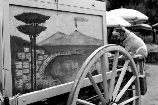 """Michael Friedel """"Leierkasten"""", Neapel, Italien, 1953"""