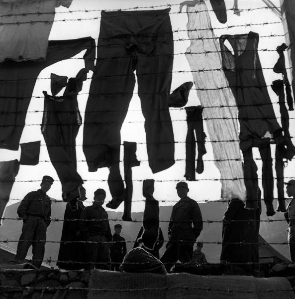 """Werner Bischof """"Stracheldraht als Wäscheleine"""", Koje-do, Südkorea, 1952"""