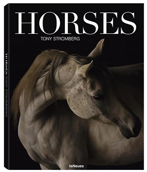 """Tony Stromberg """"Horses"""""""