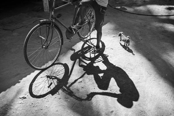 """Emanuele Scorcelletti """"Indian shadow, Tamil Nadu"""", Indien, November 2017"""